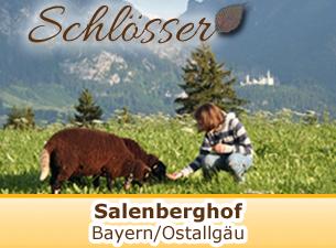 Weitere Informationen zum Salenberghof