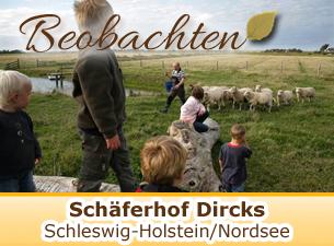 Weitere Informationen zum Schäferhof Dircks