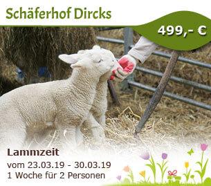 Lammzeit auf dem Schäferhof Dircks