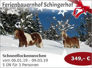 Schneeflockenwochen auf dem Schingerhof