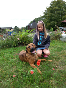 Familienurlaub im herbstlichen Mecklenburg auf dem Ferienhof Waldeck