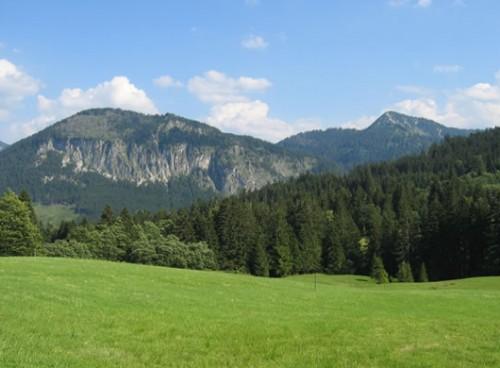 Umgebung des Ferien- und Kräuterlandhofs Prinz
