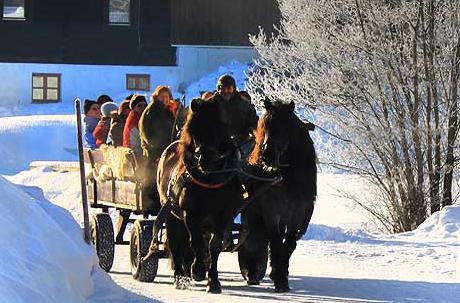 Winterliche Kutschfahrt