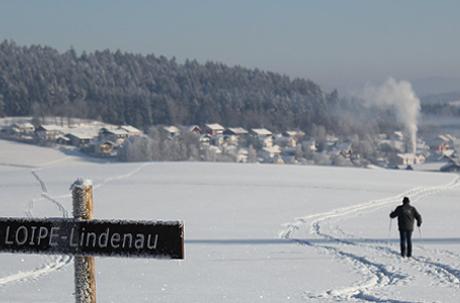 Winterimpressionen aus der Umgebung
