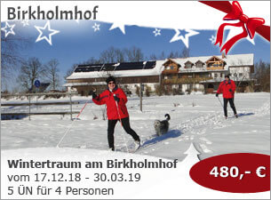 Wintertraum am Birkholmhof