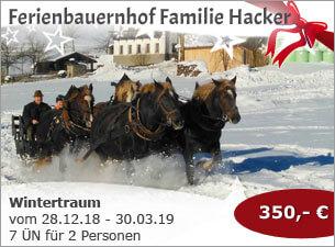 Ferienbauernhof Familie Hacker - Wintertraum bei Familie Hacker