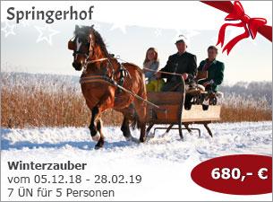 Springerhof - Winterzauber